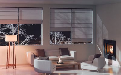 What are My Options for Window Shades?
