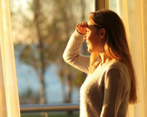 Glare Issues & Excessive Heat Problems As You Spend Time At Home? - Home Window Tinting in Western North Carolina, Eastern Tennessee and Upstate South Carolina