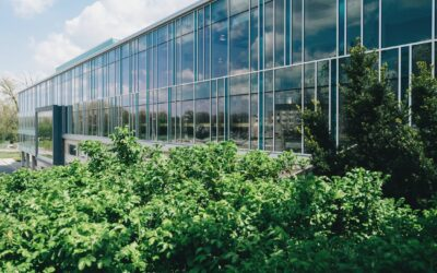 2021 Construction Trends Facilitated By Commercial Window Films